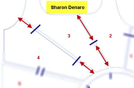 sharon_denaro_analysis1